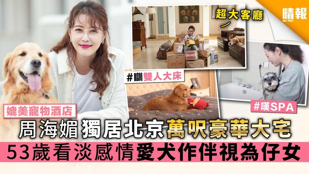 【媲美寵物酒店】周海媚獨居北京萬呎豪華大宅 53歲看淡感情 愛犬作伴視為仔女