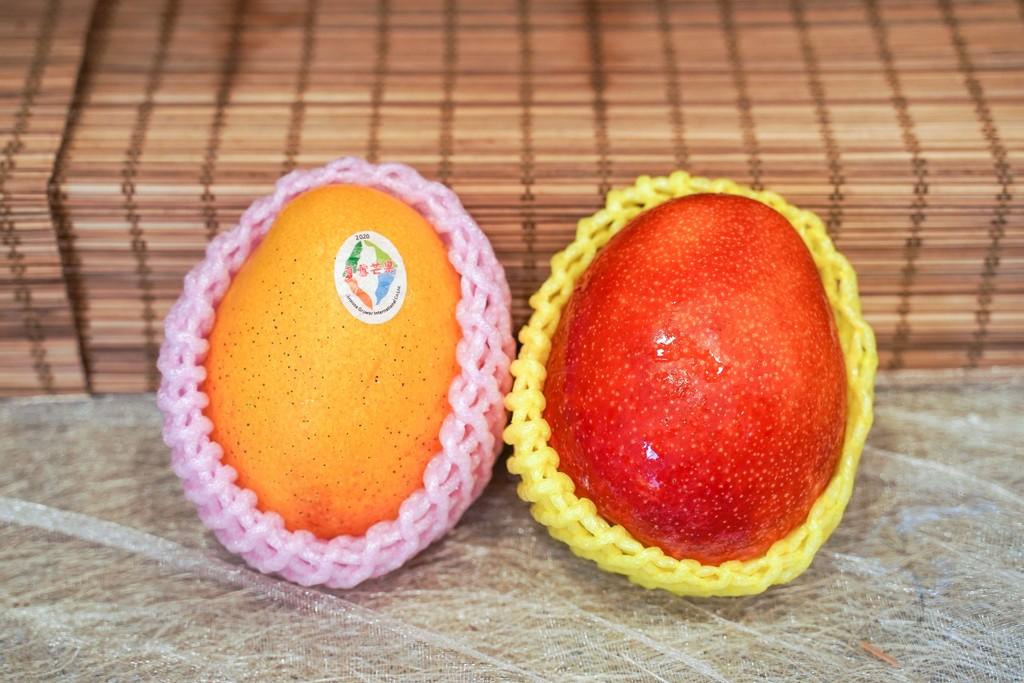 【芒果營養】$400與$8芒果有什麼分別?5款當造芒果的種類/味道/價錢(附揀靚芒果貼士)