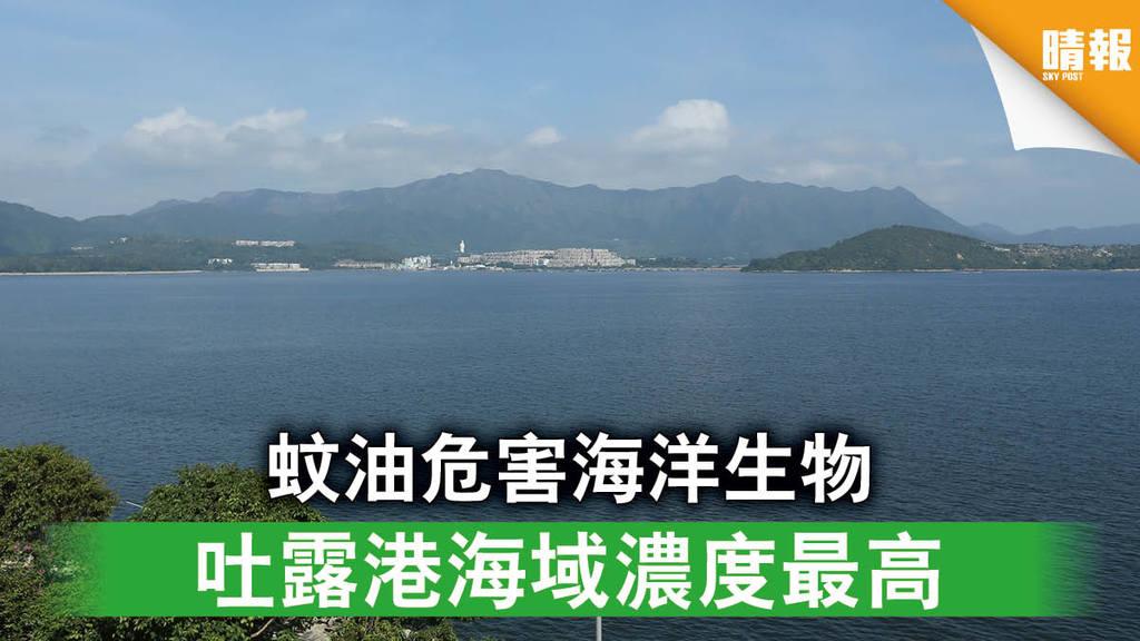 【海洋污染】蚊油危害海洋生物 吐露港海域濃度最高