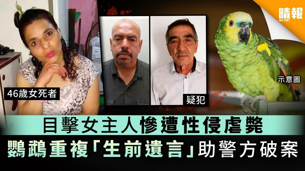 目擊女主人慘遭性侵虐斃 鸚鵡重複「生前遺言」助警方破案