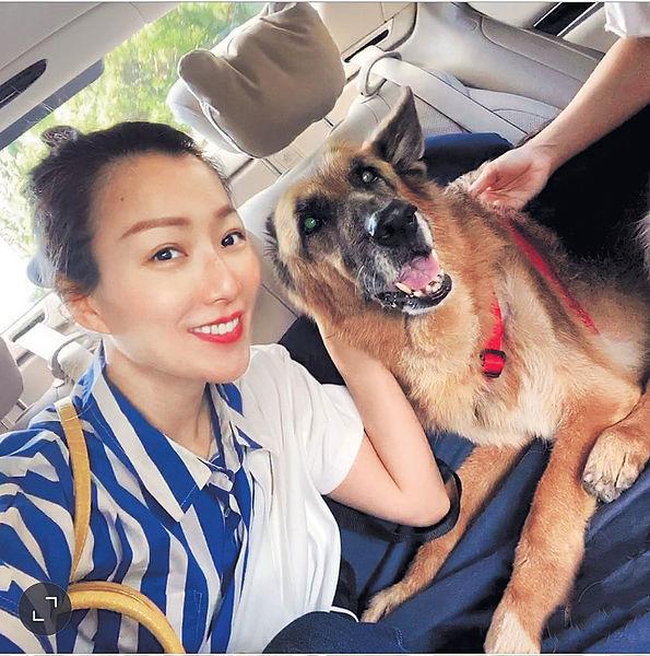 跟動物治療師上堂 鄭秀文替15歲愛犬按摩
