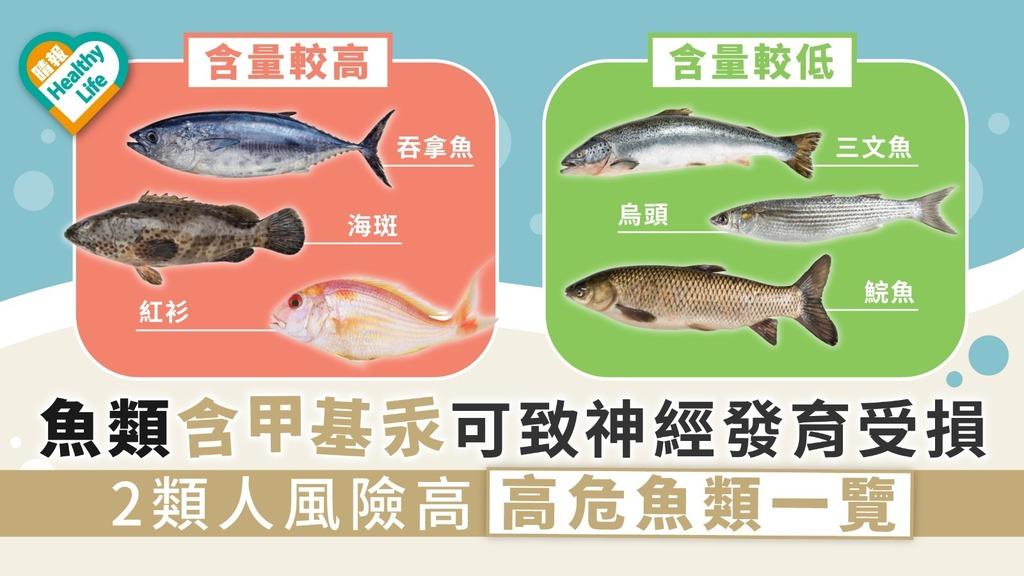 【食物安全】魚類含甲基汞可致神經發育受損 2類人風險高 高危魚類一覽