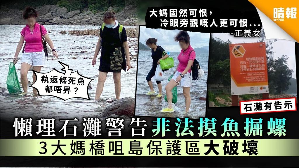 【破壞環境】橋咀島石灘非法摸魚掘螺斷正 3位大媽:執返條死魚都唔畀?