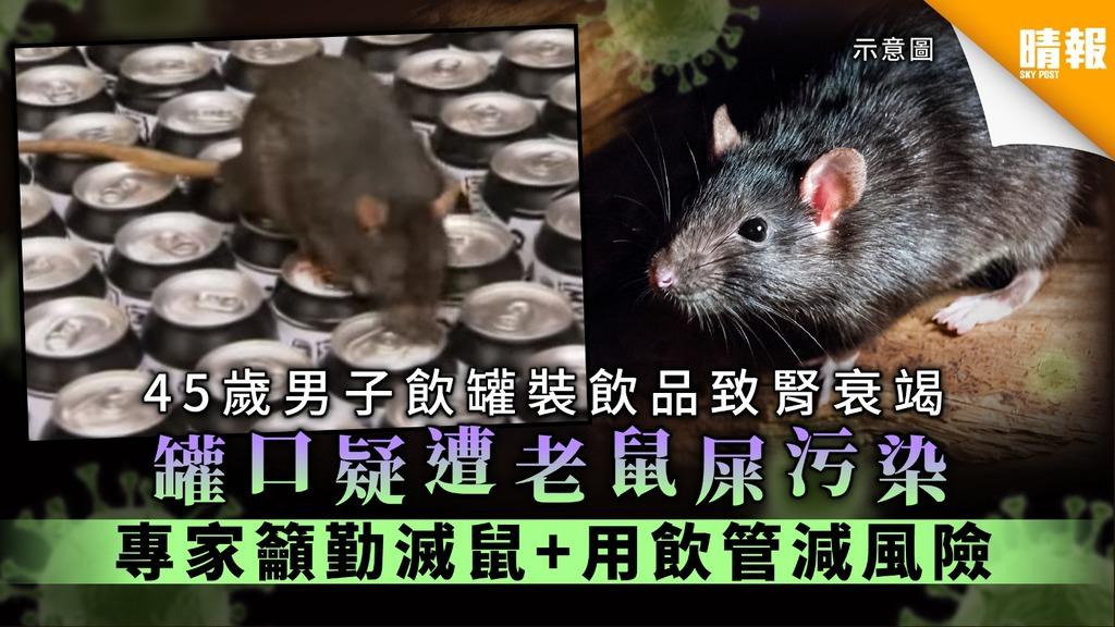 【漢坦病毒】45歲男子飲罐裝飲品致腎衰竭 罐口疑遭老鼠屎污染 專家籲勤滅鼠+用飲管減風險