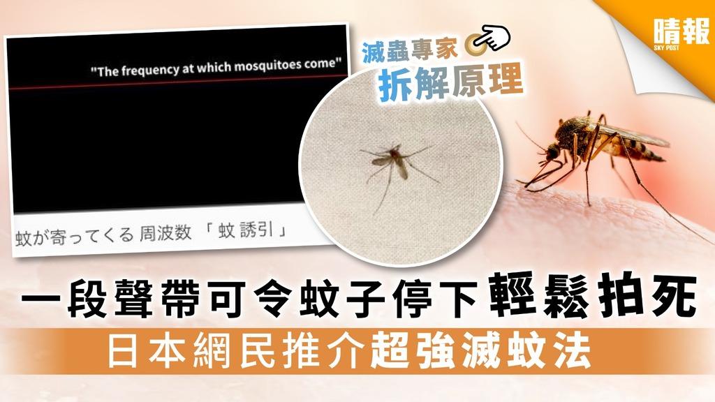 【音波功滅蚊】一段聲帶可令蚊子停下輕鬆拍死 日本網民推介超強滅蚊法
