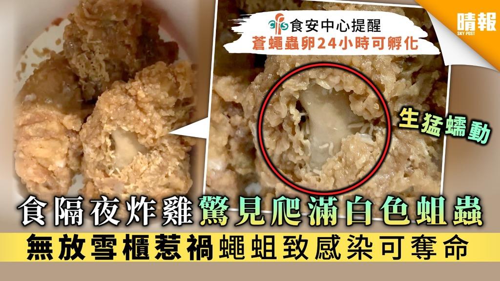 【食用安全】食隔夜炸雞驚見爬滿白色蛆蟲 無放雪櫃惹禍蠅蛆致感染可奪命