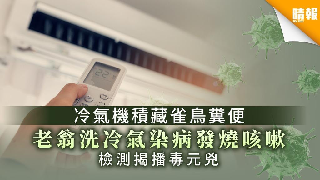 冷氣機積藏雀鳥糞便 老翁冷氣機染病發燒咳嗽 檢測揭播毒元兇