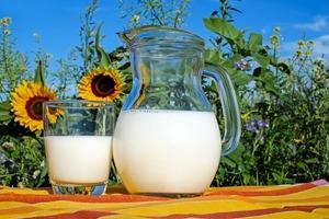 【高鈣食物排行榜】20大高鈣食物排行榜 芝士第9/全脂牛奶第10位