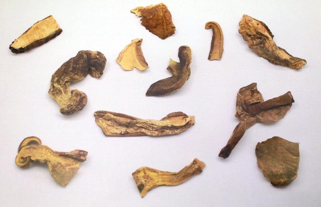 【食物中毒】「好棧牛肝菌」疑摻有毒菇類致食物中毒 食安中心指示停售回收
