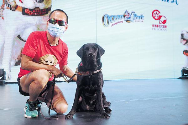 海洋公園助繁殖導盲犬 望本地數量增