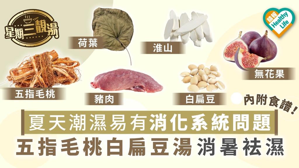 【星期三靚湯】夏天濕氣易有消化系統問題 五指毛桃白扁豆湯消暑袪濕