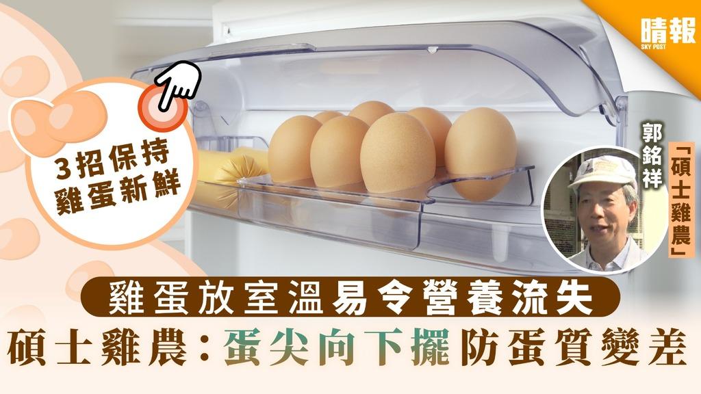 【雞蛋保存】雞蛋放室溫易令營養流失 碩士雞農:蛋尖向下擺防蛋質變差