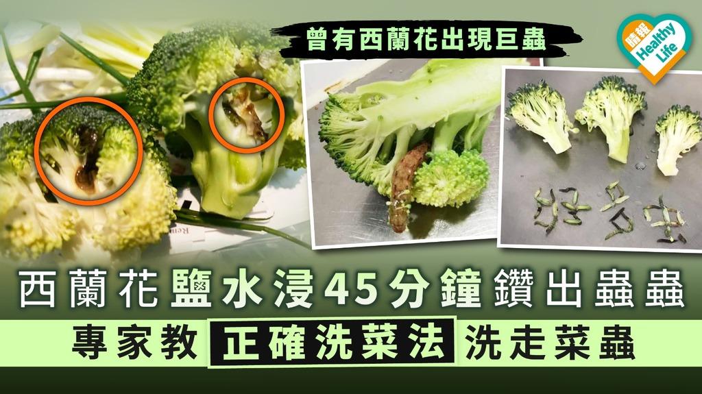 【食用安全】西蘭花鹽水浸45分鐘鑽出蟲蟲 專家教正確洗菜法洗走菜蟲