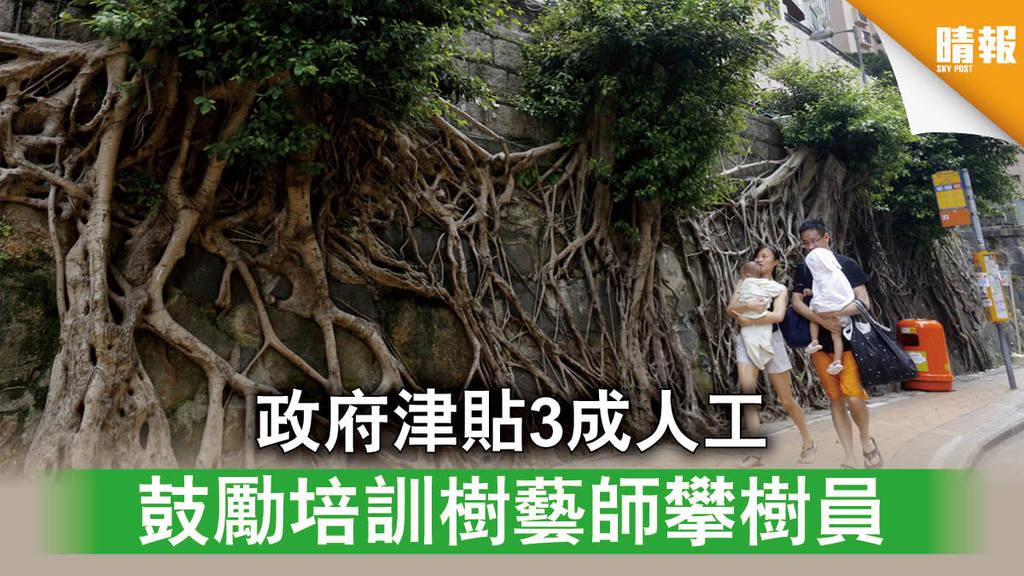 【就業支援】政府津貼3成人工 鼓勵培訓樹藝師攀樹員