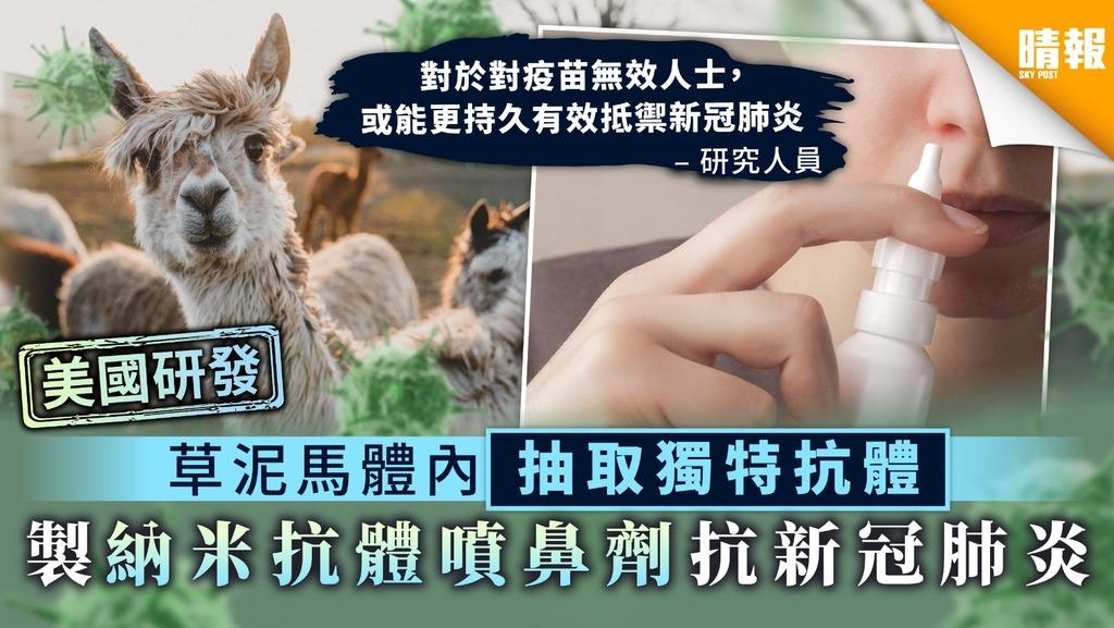 【美國研發】草泥馬體內抽取獨特抗體 製納米抗體噴鼻劑抗新冠肺炎
