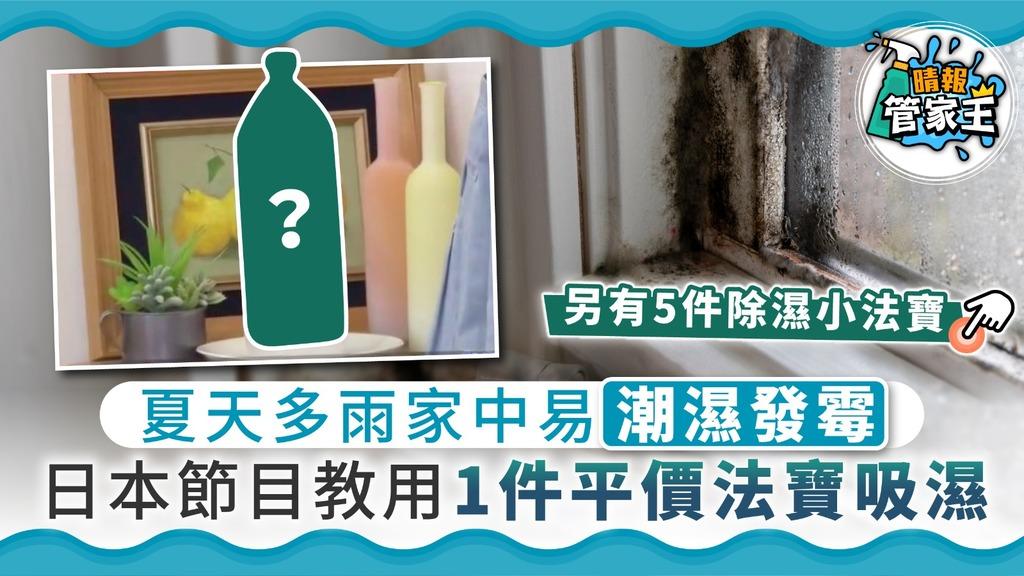 【家居發霉】夏天多雨家中易潮濕發霉 日本節目教用1件平價法寶吸濕【附5件除濕小法寶】