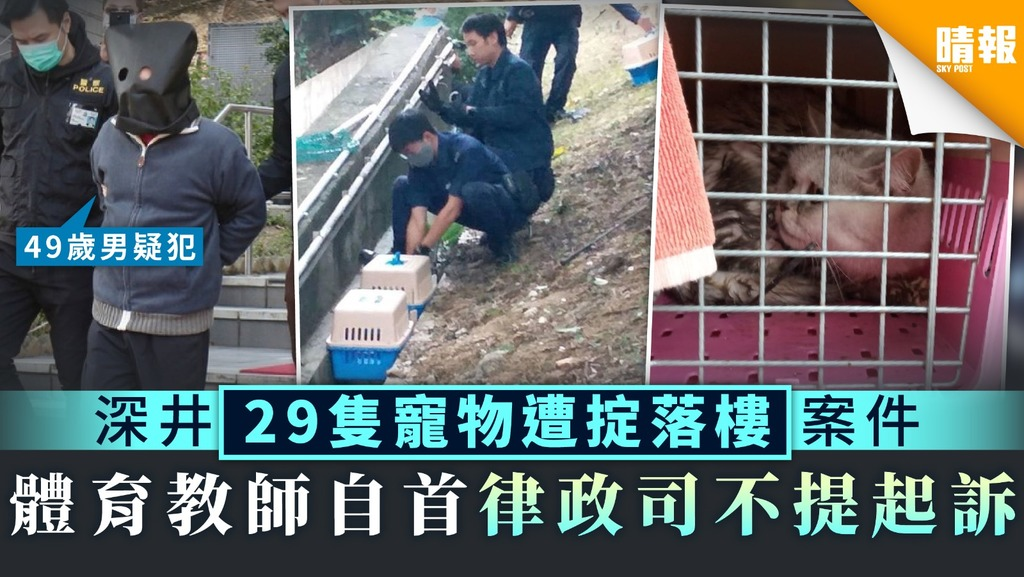 【豪景花園】深井29隻寵物遭掟落樓案件 體育教師自首律政司不提起訴