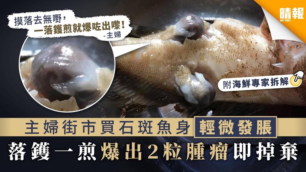 【食用安全】主婦街市買石斑魚身輕微發脹 落鑊一煎爆出2粒腫瘤即掉棄【附海鮮專家解釋】