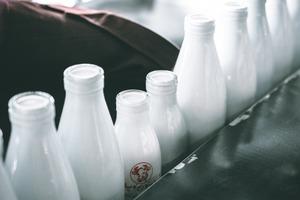 【食物安全】不含類雌激素、有害毒素! 2020年8款安全牛奶/牛奶飲品名單一覽