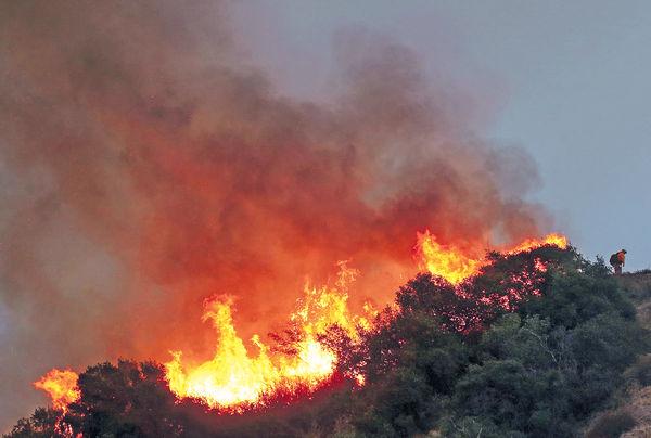 濃煙飄到東岸紐約華府 美西岸山火增至36死