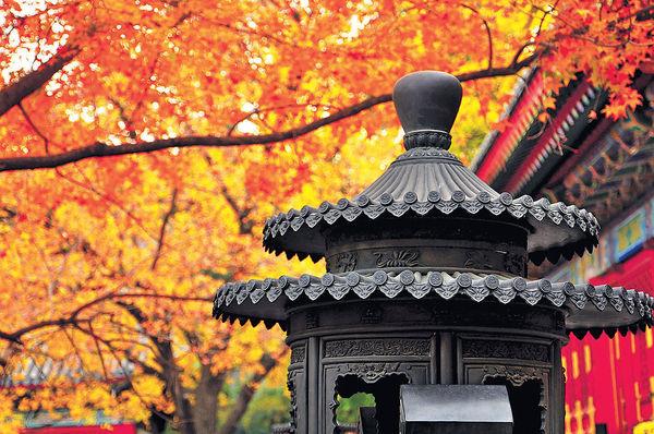 中國最美的六大紅葉觀賞地