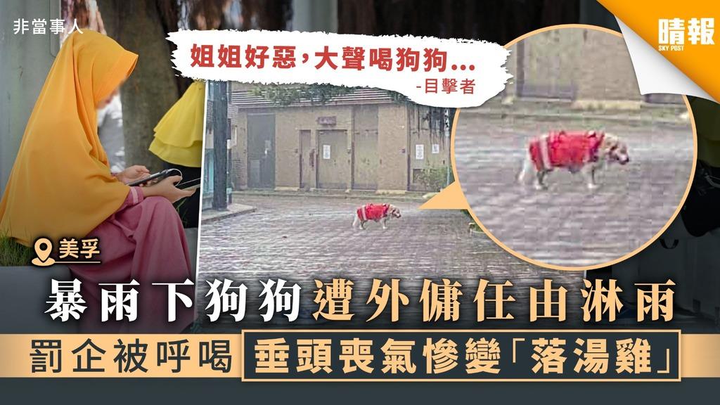 【美孚狗主注意】暴雨下狗狗遭外傭任由淋雨 罰企被呼喝垂頭喪氣慘變「落湯雞」