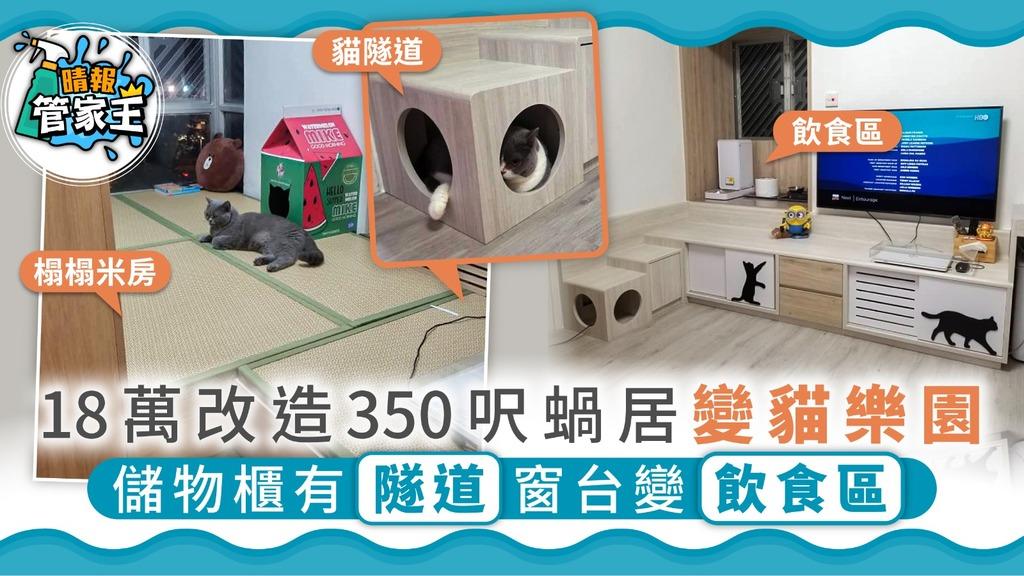 【貓奴之家】18萬改造350呎蝸居變貓樂園 儲物櫃有隧道窗台變飲食區