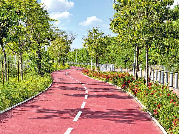 全長60公里 屯馬「超級單車徑」終貫通 料可踩足6個鐘 新段多彎要小心
