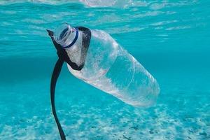 【環保生活】 英國大學研發超級酶可吃掉塑膠分解時間快6倍! 一文睇清9大塑膠產品自然分解所需時間