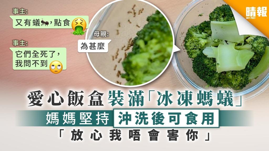 【食用安全】愛心飯盒裝滿「冰凍螞蟻」 媽媽堅持沖洗後可食用: 「放心我唔會害你」【附清洗西蘭花方法】