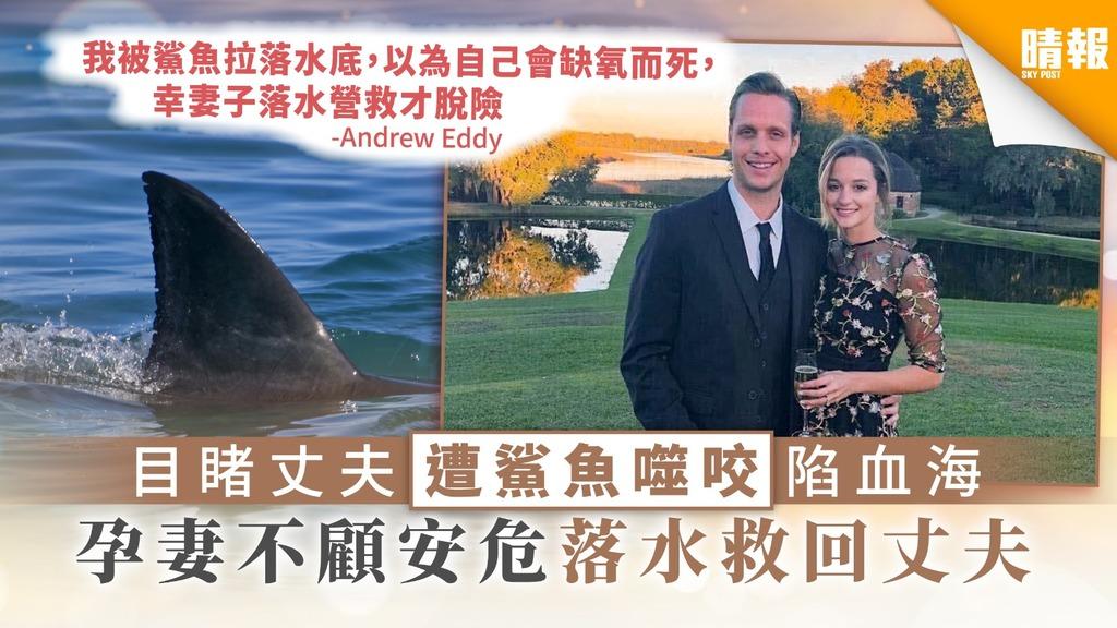 【患難見真情】目睹丈夫遭鯊魚噬咬陷血海 孕妻不顧安危落水救回丈夫