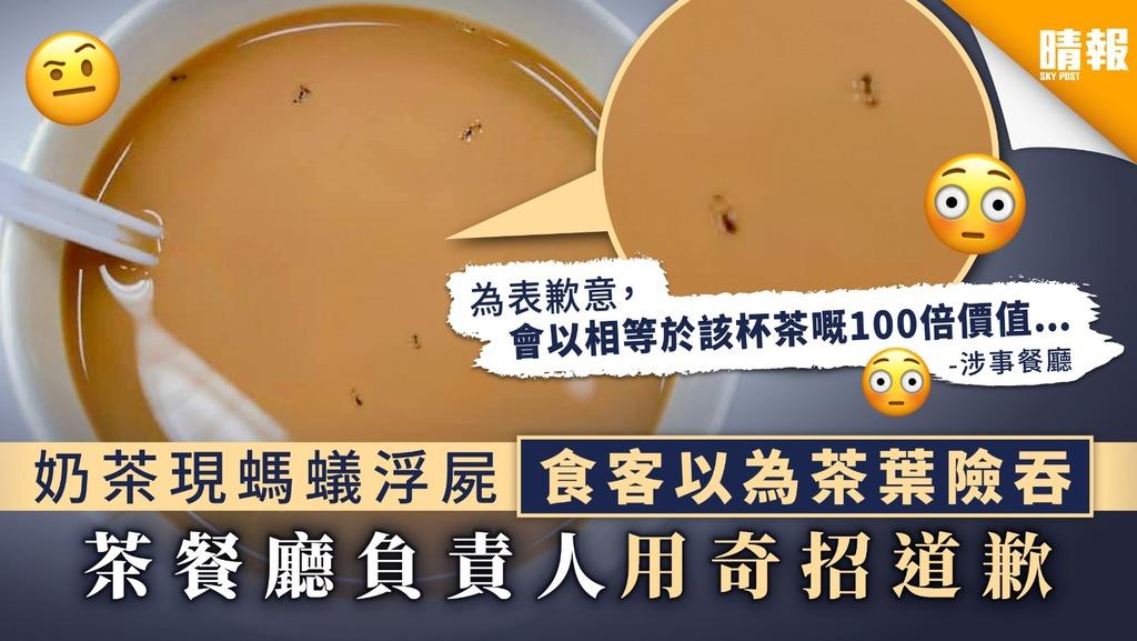 【食用安全】奶茶現螞蟻浮屍食客以為茶葉險吞 茶餐廳負責人用奇招道歉