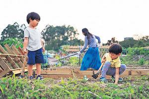 社工營養師媽媽合辦教育平台 讓孩子學會關愛