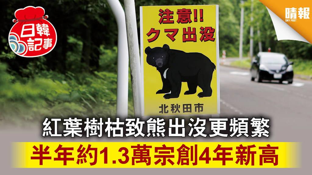 【日韓記事】紅葉樹枯致熊出沒更頻繁 半年約1.3萬宗創4年新高