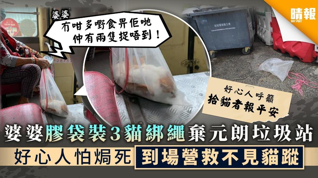 【狠心棄貓】婆婆膠袋裝3貓綁繩棄元朗垃圾站 好心人怕焗死到場營救不見貓蹤