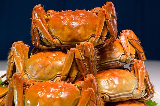 【大閘蟹2020】上海餐館夏麵館大閘蟹放題 100分鐘任食蟹粉菜/大閘蟹