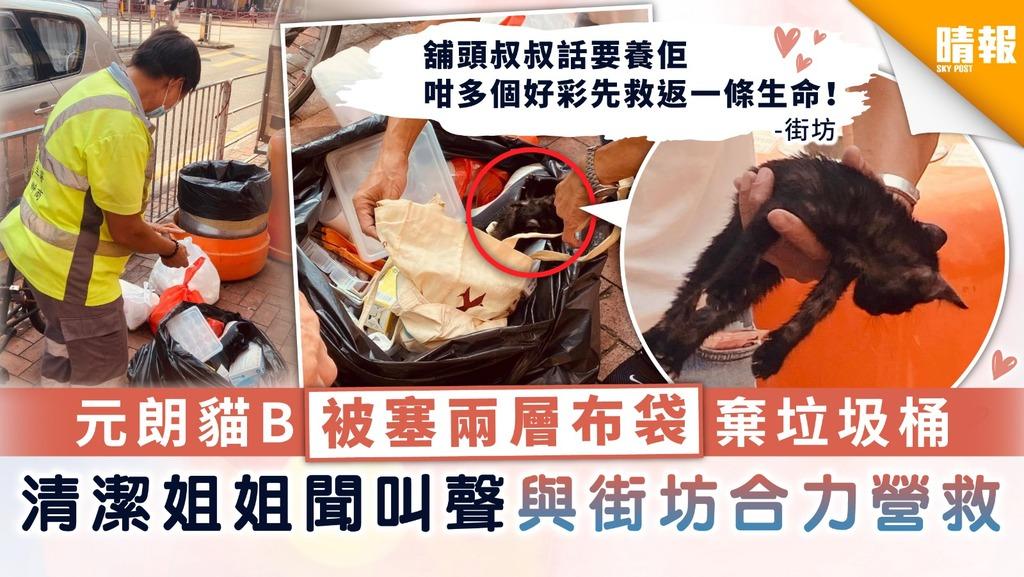 【於心何忍】元朗貓B被塞兩層布袋棄垃圾桶 清潔姐姐聞叫聲與街坊合力解救