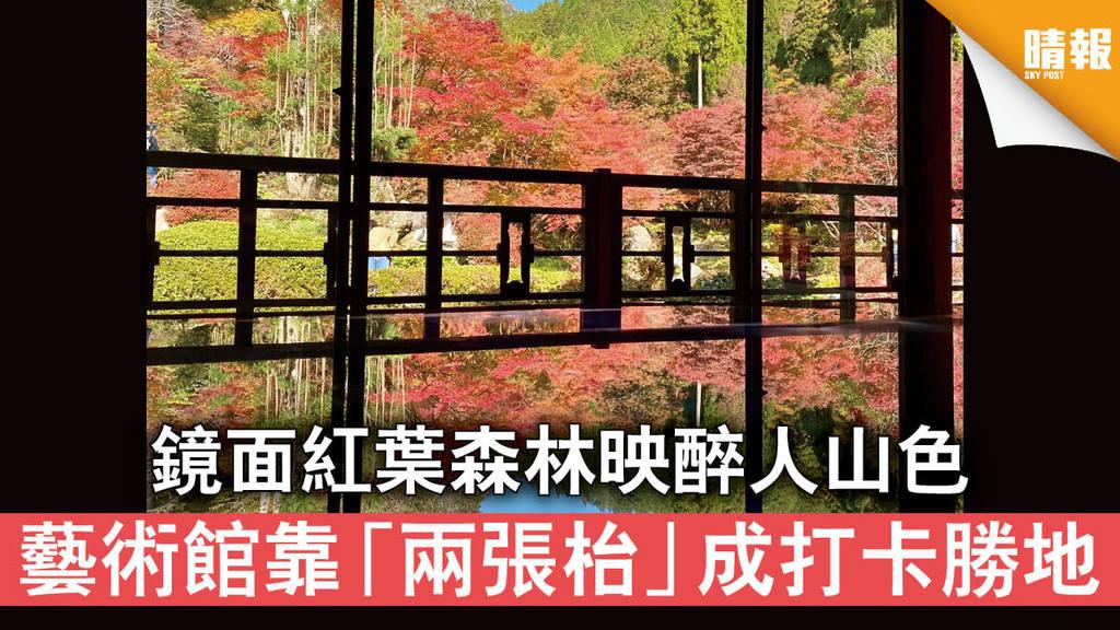 【日韓記事】鏡面紅葉森林映醉人山色 藝術館靠「兩張枱」成打卡勝地