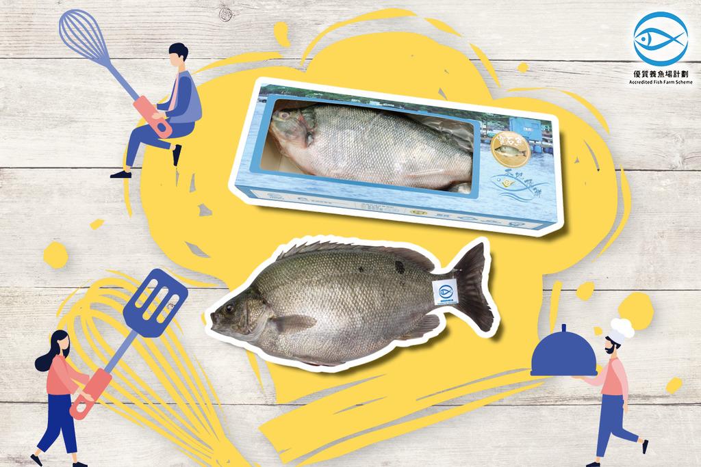 分享自創食譜 贏寶石魚及魚禮品套裝