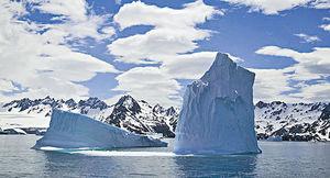 全球最大冰山逼近 大西洋小島企鵝恐滅頂