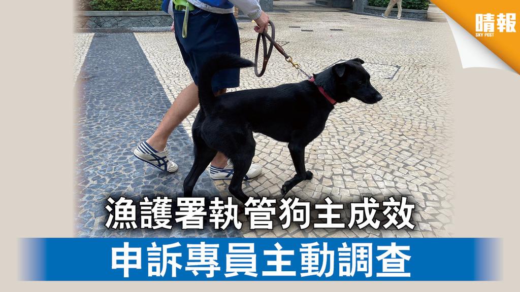 【寵物權益】漁護署執管狗主成效 申訴專員主動調查