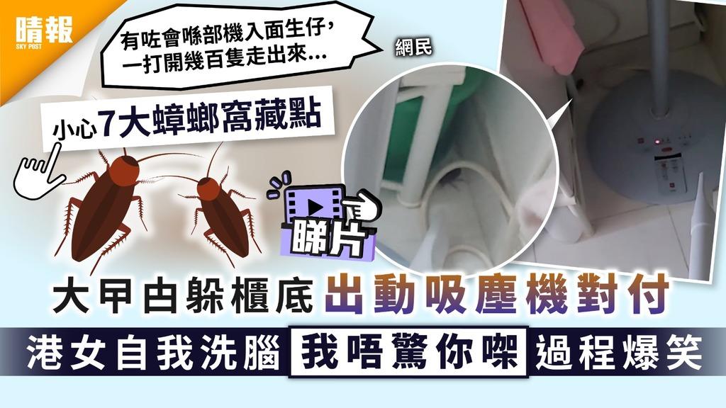 曱甴出沒|大曱甴躲櫃底出動吸塵機對付 港女自我洗腦「我唔驚你㗎」過程爆笑|7大蟑螂窩藏點