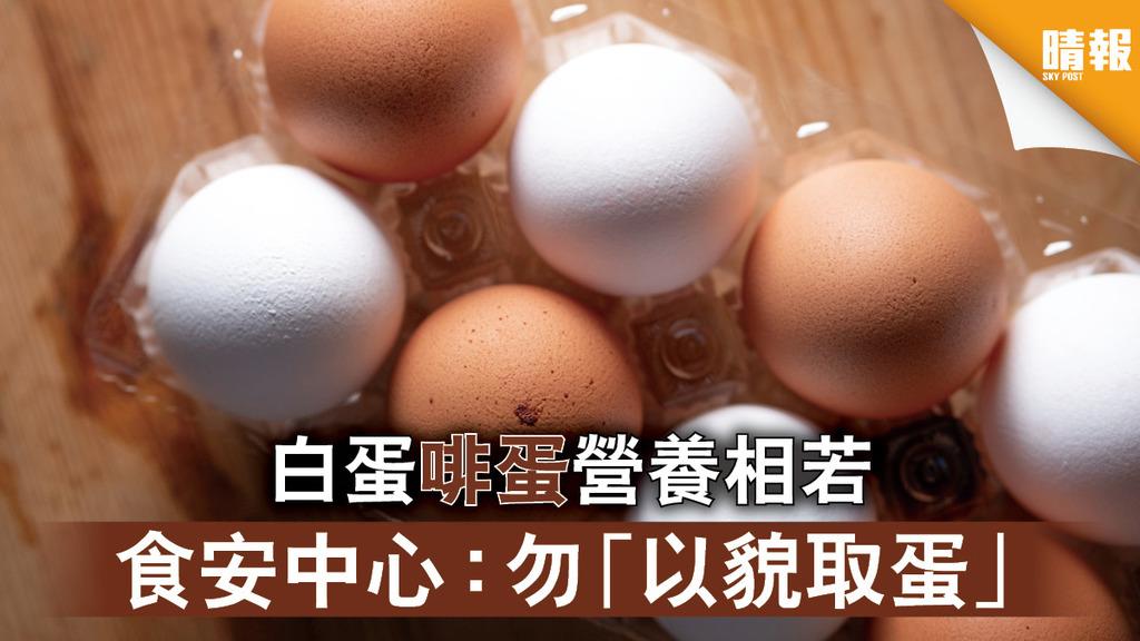 食物小知識|白蛋啡蛋營養相若 食安中心:勿「以貌取蛋」