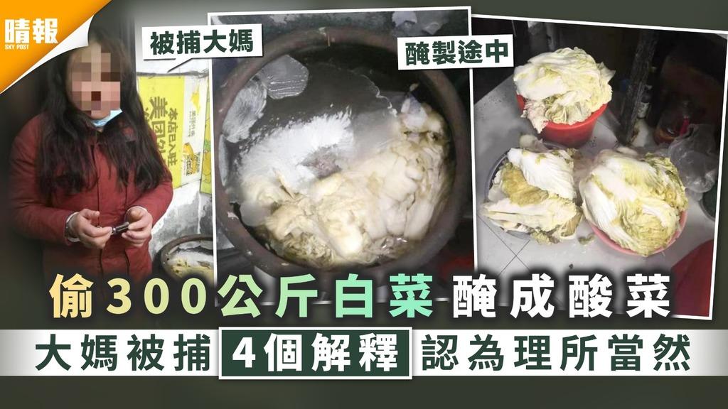 奇怪小偷︳偷300公斤白菜醃成酸菜 大媽被捕4個解釋認為理所當然