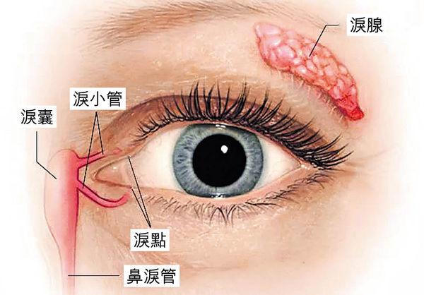 雙眼水汪汪反是缺水?