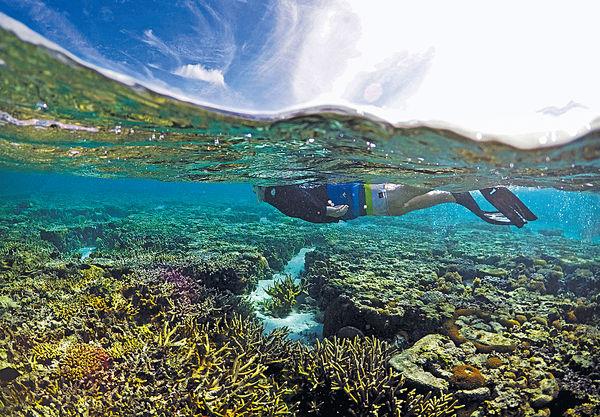 氣候變遷威脅自然遺產 大堡礁首列「瀕危」