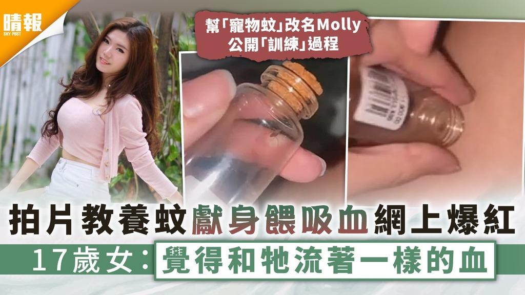 另類寵物|拍片教養蚊獻身餵吸血網上爆紅 17歲女:覺得和牠流著一樣的血