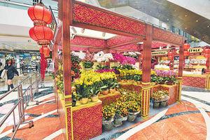 新春年貨大街 開鑼啦! 過千款賀年食品、家居飾品及年花