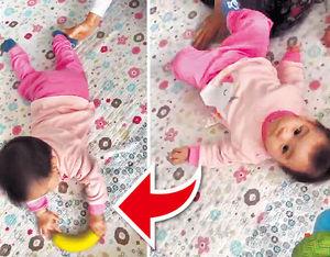 楊茜堯用香蕉引囡囡學爬