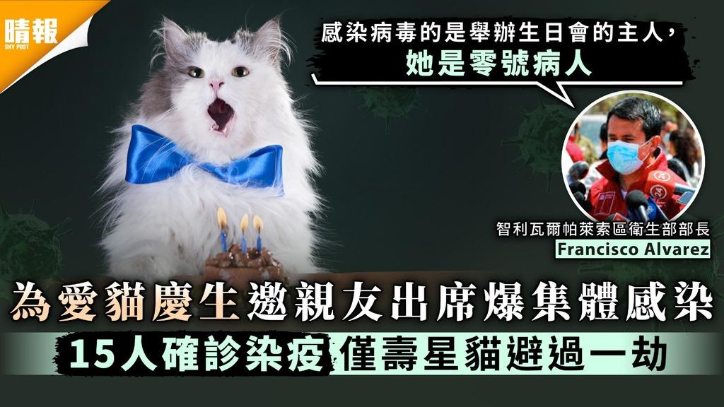 新冠肺炎|為愛貓慶生邀親友出席爆集體感染 15人確診染疫僅壽星貓避過一劫